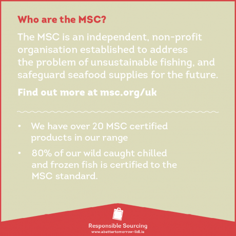 MSC Logo Sourcing